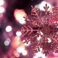 Как встречать новый год 2013