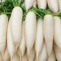 Дайкон – полезные свойства овоща