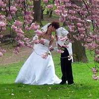 Места для фотосъёмки свадеб