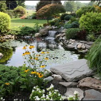 Оформление садового водоема
