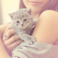Как ухаживать за котёнком